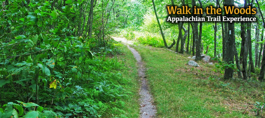 A true walk in the woods on our Appalachian Trail Experience