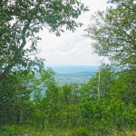 Stunning view through the trees from the Appalachian Trail