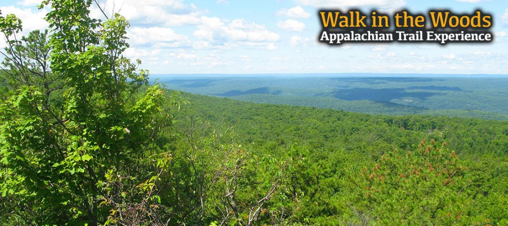 Stunning vistas await you on our Appalachian Trail Experience